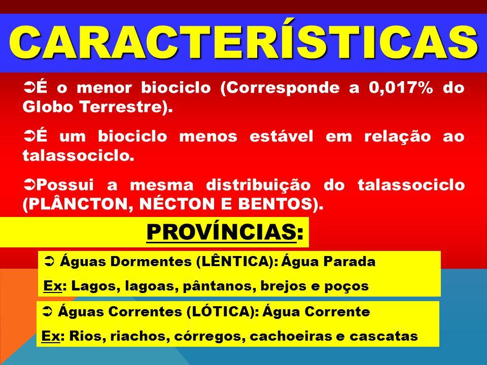CARACTERÍSTICAS É o menor biociclo (Corresponde a 0,017% do Globo Terrestre). É um biociclo menos estável em relação ao talassociclo. Possui a mesma d