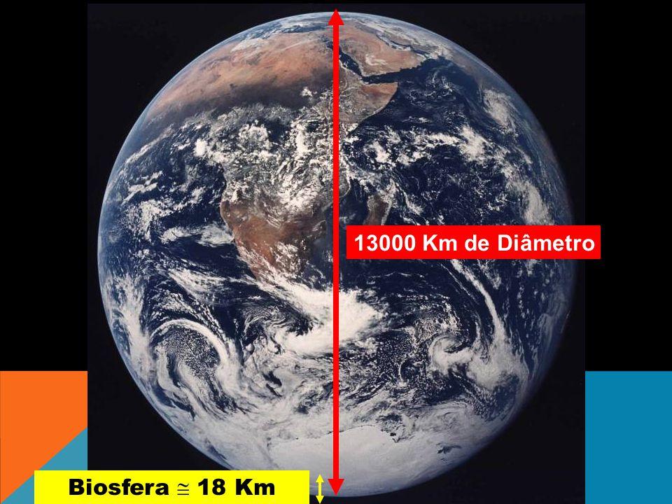 13000 Km de Diâmetro Biosfera 18 Km
