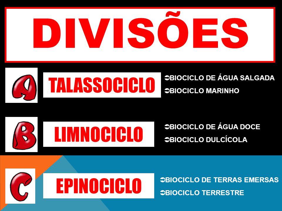 TALASSOCICLO LIMNOCICLO EPINOCICLO DIVISÕES BIOCICLO DE ÁGUA SALGADA BIOCICLO MARINHO BIOCICLO DE ÁGUA DOCE BIOCICLO DULCÍCOLA BIOCICLO DE TERRAS EMER