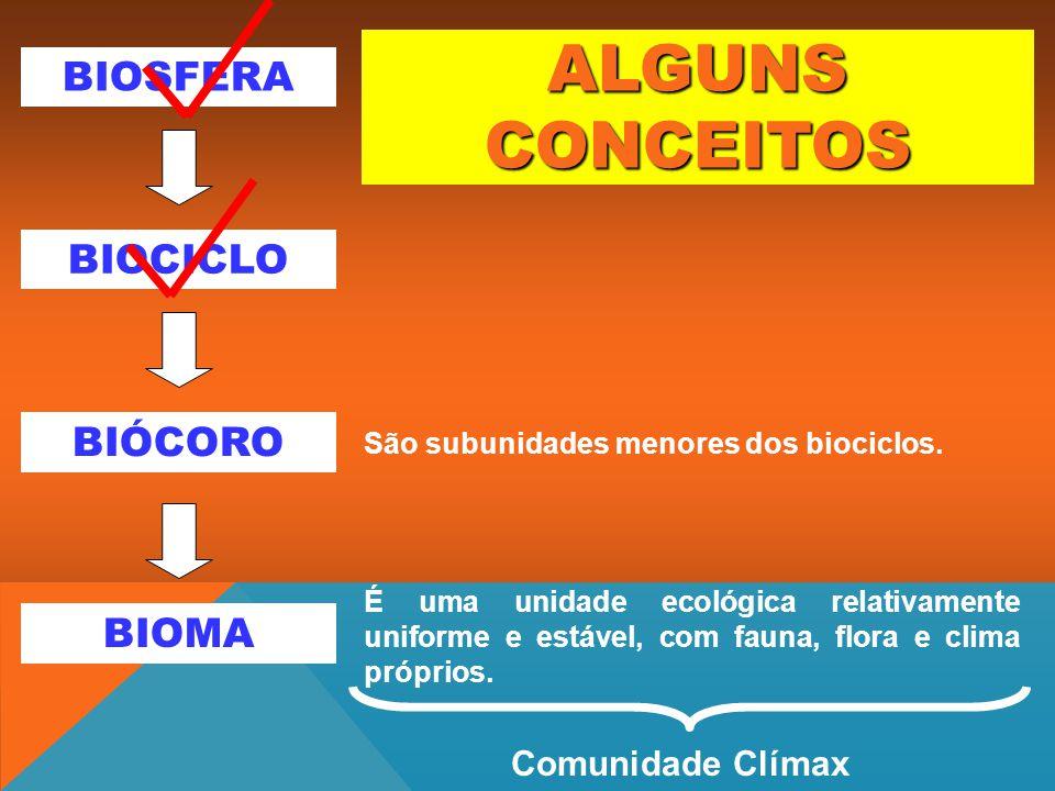 BIOSFERA BIÓCORO BIOMA BIOCICLO É uma unidade ecológica relativamente uniforme e estável, com fauna, flora e clima próprios. São subunidades menores d