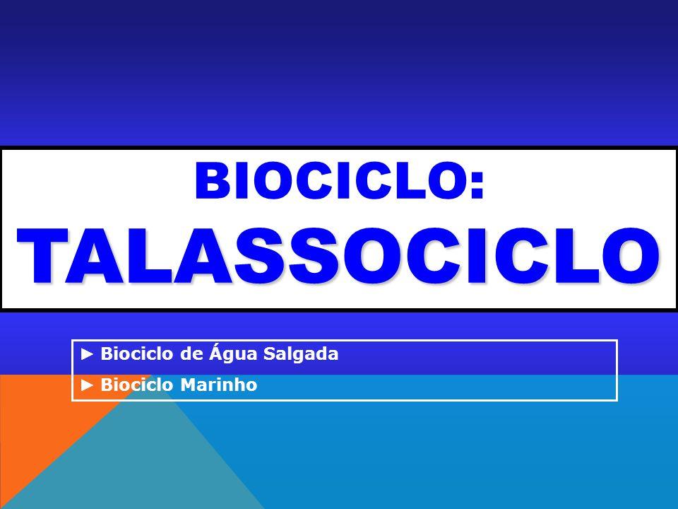 TALASSOCICLO BIOCICLO: TALASSOCICLO Biociclo de Água Salgada Biociclo Marinho