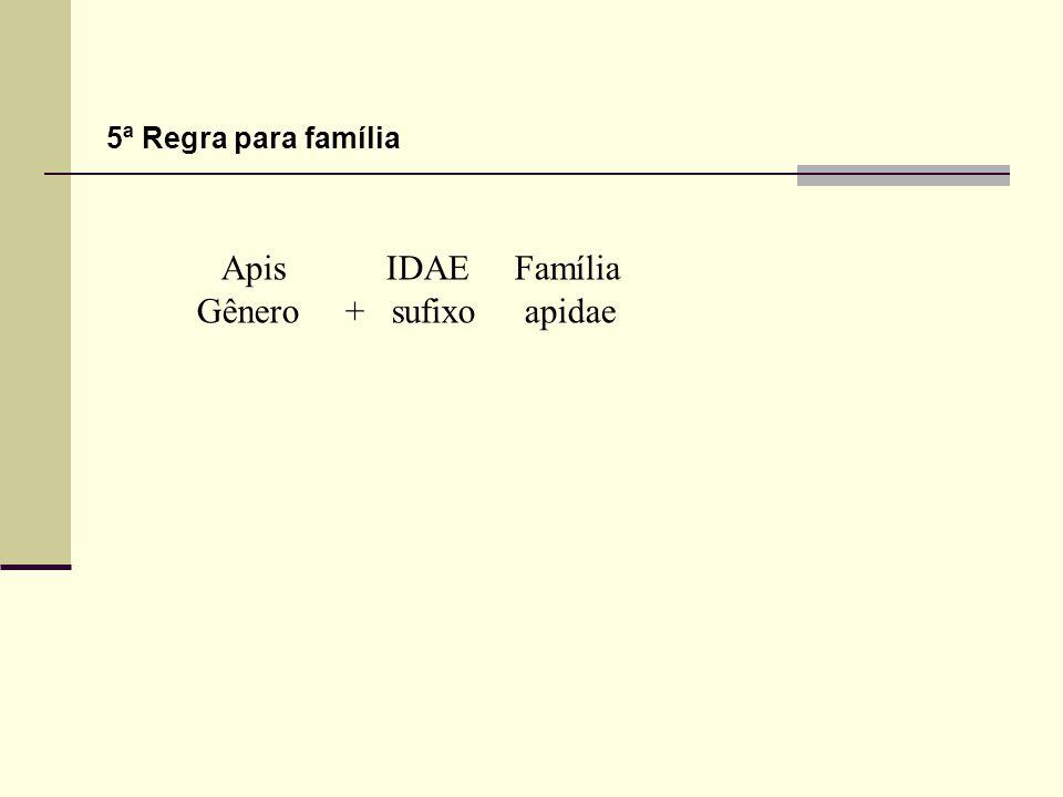 Apis IDAE Família Gênero + sufixo apidae 5ª Regra para família