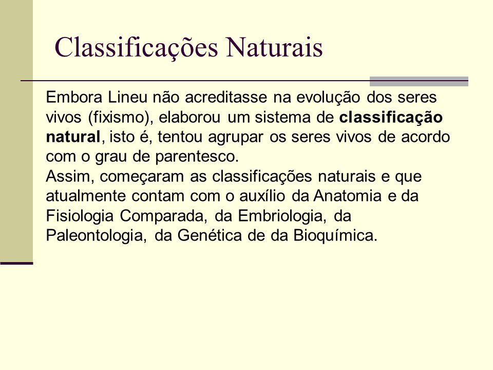 Classificações Naturais Embora Lineu não acreditasse na evolução dos seres vivos (fixismo), elaborou um sistema de classificação natural, isto é, tentou agrupar os seres vivos de acordo com o grau de parentesco.