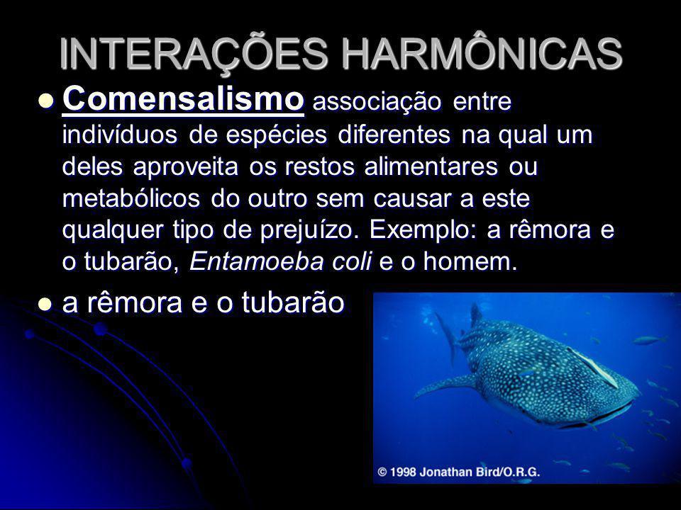 INTERAÇÕES HARMÔNICAS Comensalismo associação entre indivíduos de espécies diferentes na qual um deles aproveita os restos alimentares ou metabólicos