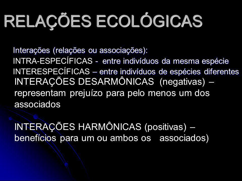 RELAÇÕES ECOLÓGICAS Interações (relações ou associações): - entre indivíduos da mesma espécie INTRA-ESPECÍFICAS - entre indivíduos da mesma espécie –