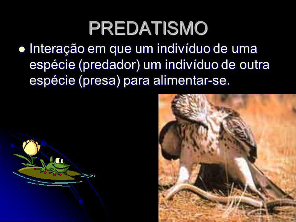 PREDATISMO Interação em que um indivíduo de uma espécie (predador) um indivíduo de outra espécie (presa) para alimentar-se. Interação em que um indiví