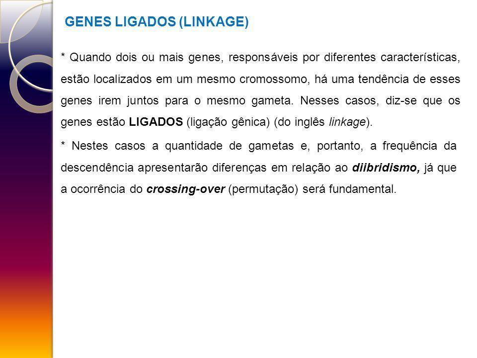 GENES LIGADOS (LINKAGE) * Quando dois ou mais genes, responsáveis por diferentes características, estão localizados em um mesmo cromossomo, há uma ten