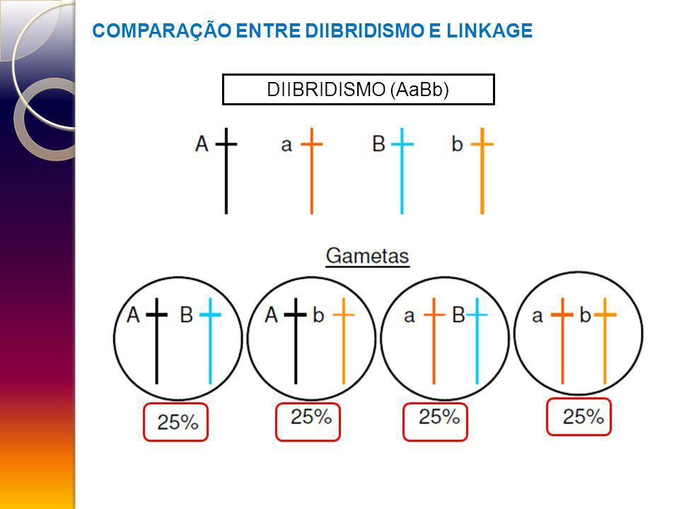 COMPARAÇÃO ENTRE DIIBRIDISMO E LINKAGE DIIBRIDISMO (AaBb)