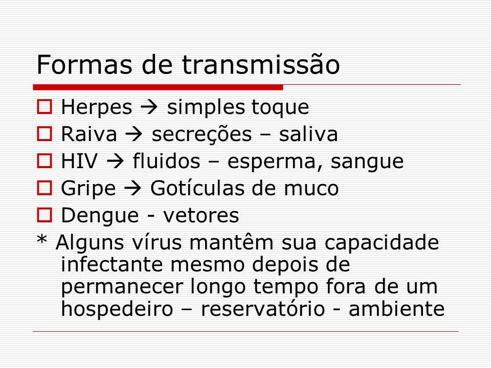 Formas de transmissão Herpes simples toque Raiva secreções – saliva HIV fluidos – esperma, sangue Gripe Gotículas de muco Dengue - vetores * Alguns ví