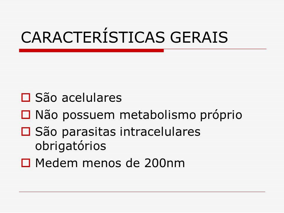 CARACTERÍSTICAS GERAIS São acelulares Não possuem metabolismo próprio São parasitas intracelulares obrigatórios Medem menos de 200nm