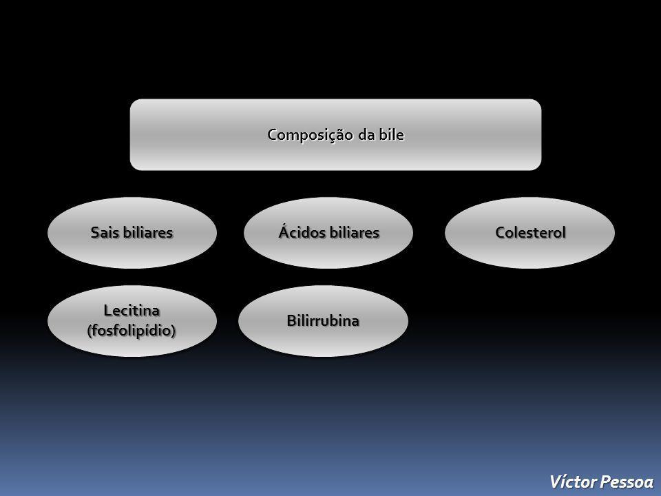 Víctor Pessoa Composição da bile Sais biliares Ácidos biliares Ácidos biliares Colesterol Colesterol Lecitina(fosfolipídio)Bilirrubina