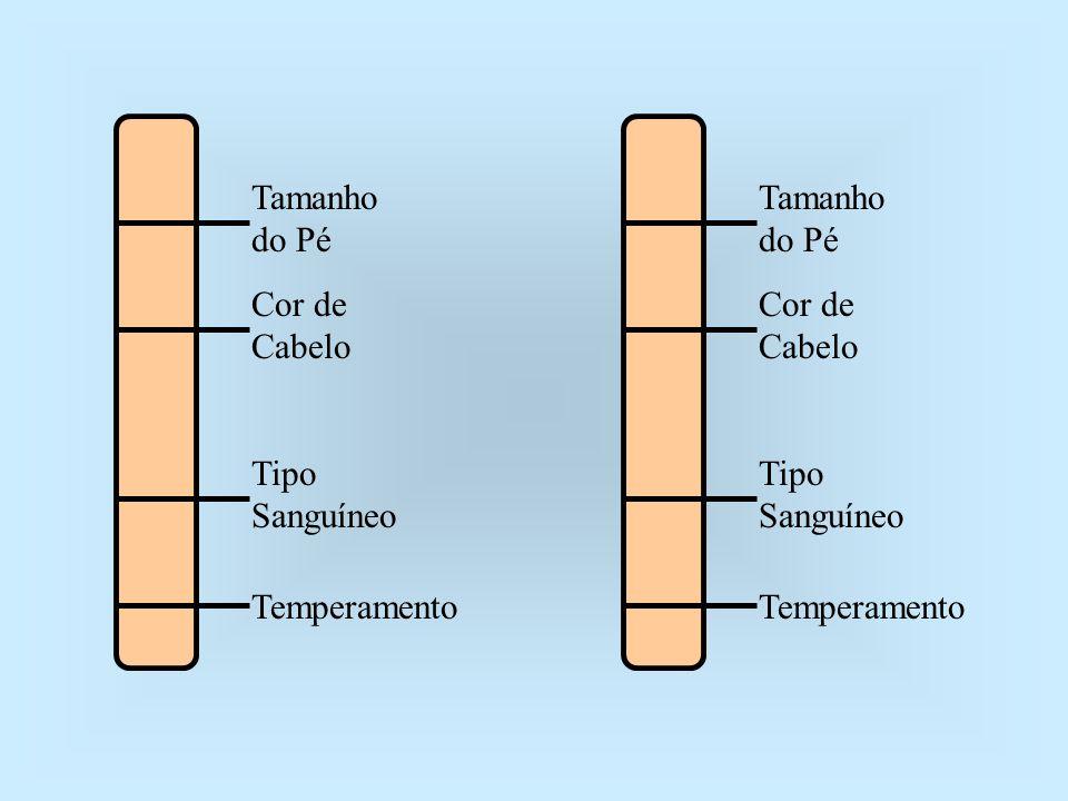 Tamanho do Pé Cor de Cabelo Tipo Sanguíneo Temperamento Tamanho do Pé Cor de Cabelo Tipo Sanguíneo Temperamento