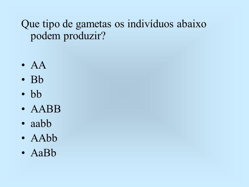 Que tipo de gametas os indivíduos abaixo podem produzir? AA Bb bb AABB aabb AAbb AaBb