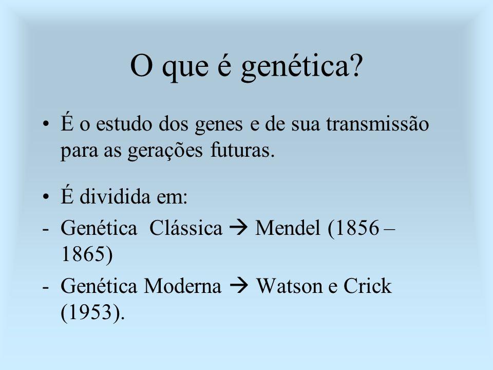 O que é genética? É o estudo dos genes e de sua transmissão para as gerações futuras. É dividida em: -Genética Clássica Mendel (1856 – 1865) -Genética
