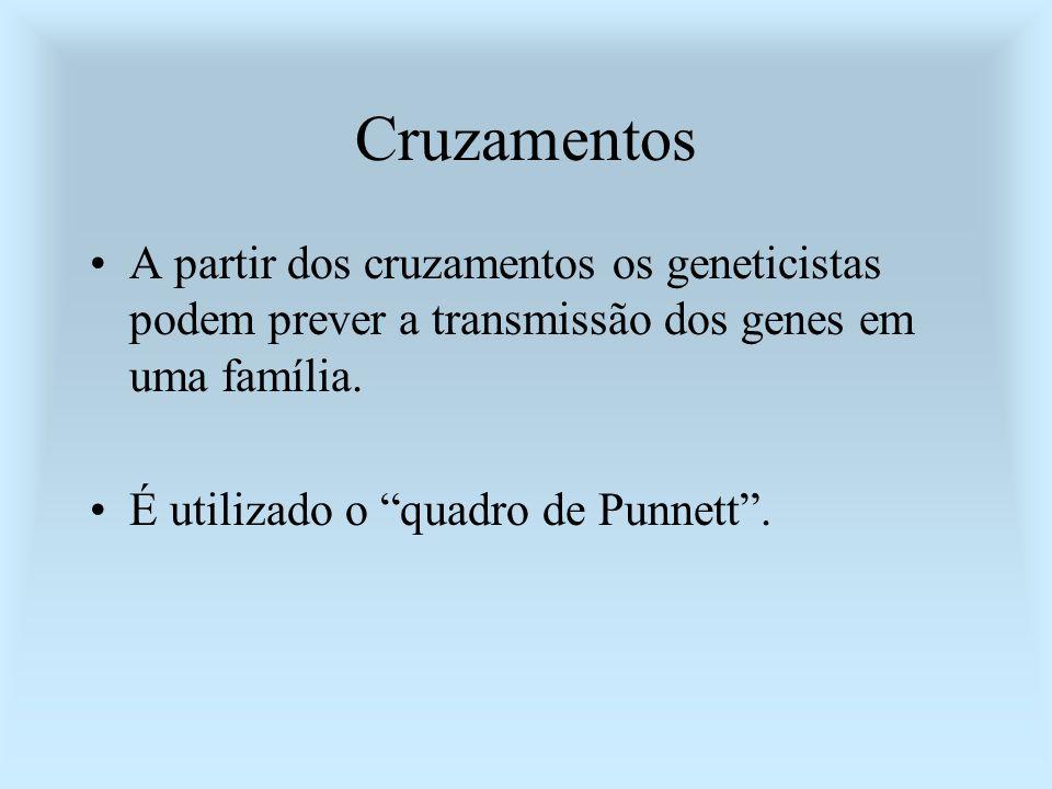 Cruzamentos A partir dos cruzamentos os geneticistas podem prever a transmissão dos genes em uma família. É utilizado o quadro de Punnett.