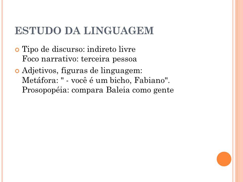 ESTUDO DA LINGUAGEM Tipo de discurso: indireto livre Foco narrativo: terceira pessoa Adjetivos, figuras de linguagem: Metáfora: