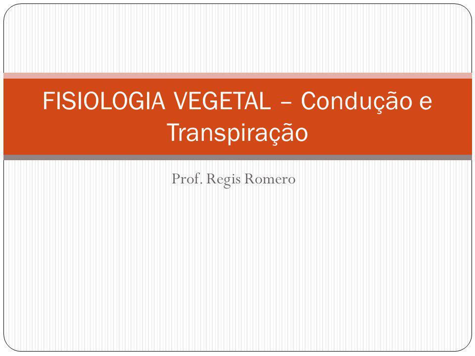 Prof. Regis Romero FISIOLOGIA VEGETAL – Condução e Transpiração