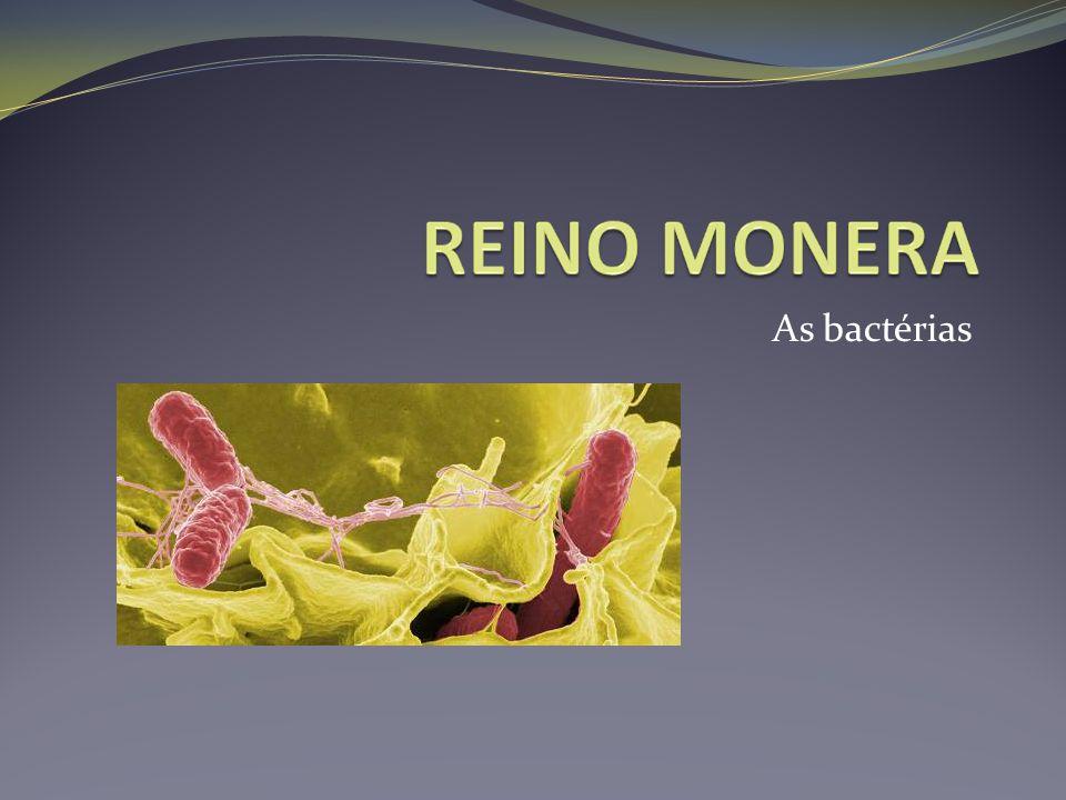 Doenças bacterianas que possuem vacina para prevenção Difteria Meningite Coqueluche Tétano Tuberculose Pneumonias