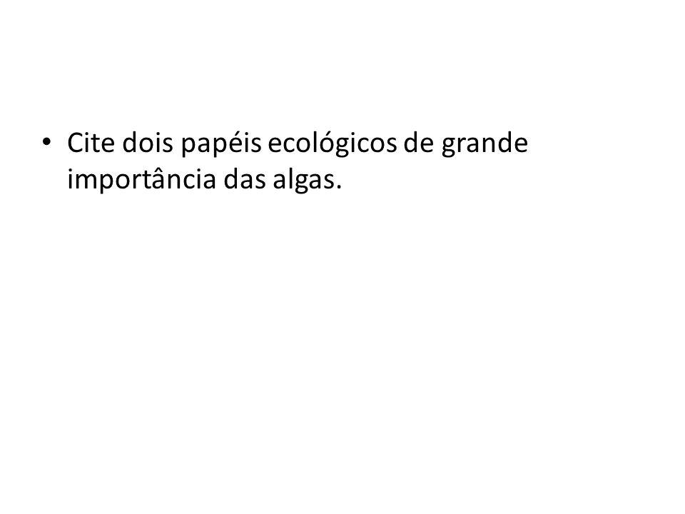 Cite dois papéis ecológicos de grande importância das algas.