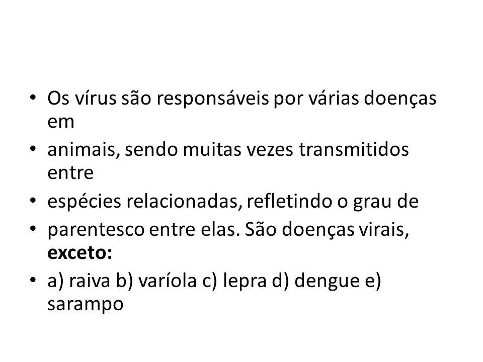 Os vírus são responsáveis por várias doenças em animais, sendo muitas vezes transmitidos entre espécies relacionadas, refletindo o grau de parentesco