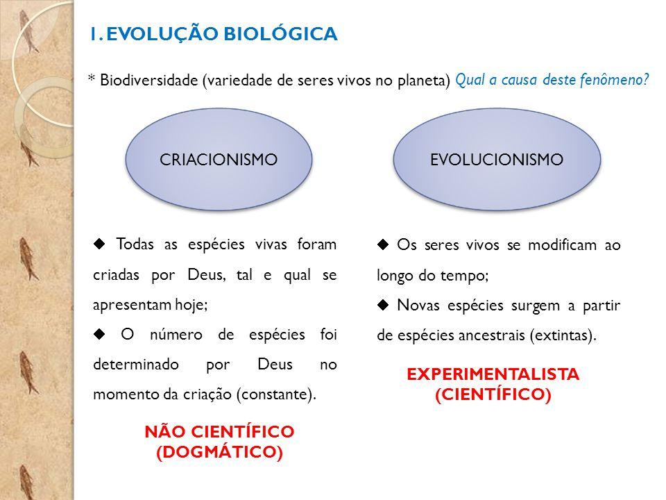 1. EVOLUÇÃO BIOLÓGICA * Biodiversidade (variedade de seres vivos no planeta) Qual a causa deste fenômeno? CRIACIONISMOEVOLUCIONISMO Todas as espécies