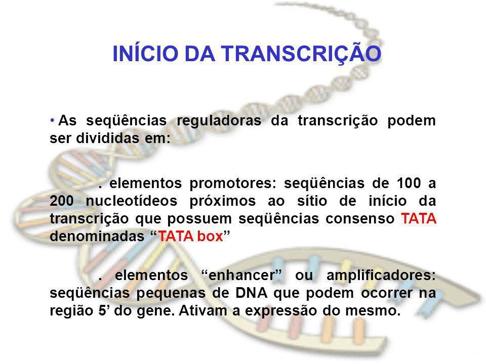 INÍCIO DA TRANSCRIÇÃO As seqüências reguladoras da transcrição podem ser divididas em:. elementos promotores: seqüências de 100 a 200 nucleotídeos pró
