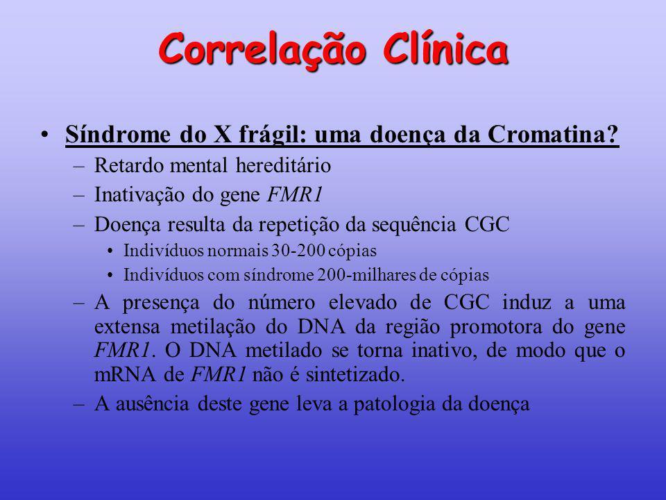 Correlação Clínica Síndrome do X frágil: uma doença da Cromatina? –Retardo mental hereditário –Inativação do gene FMR1 –Doença resulta da repetição da