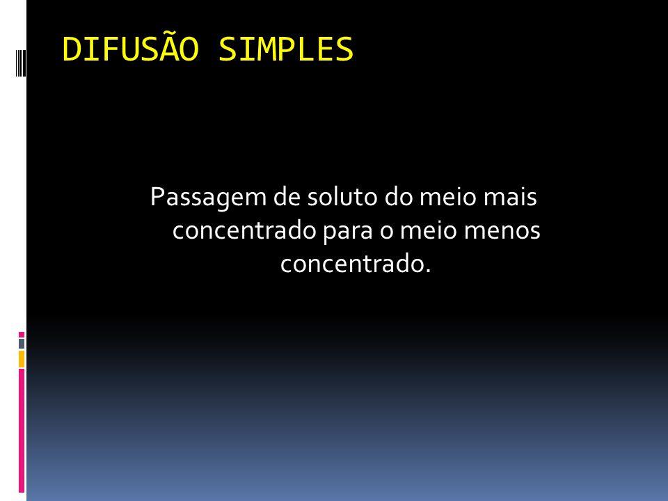 DIFUSÃO SIMPLES Passagem de soluto do meio mais concentrado para o meio menos concentrado.