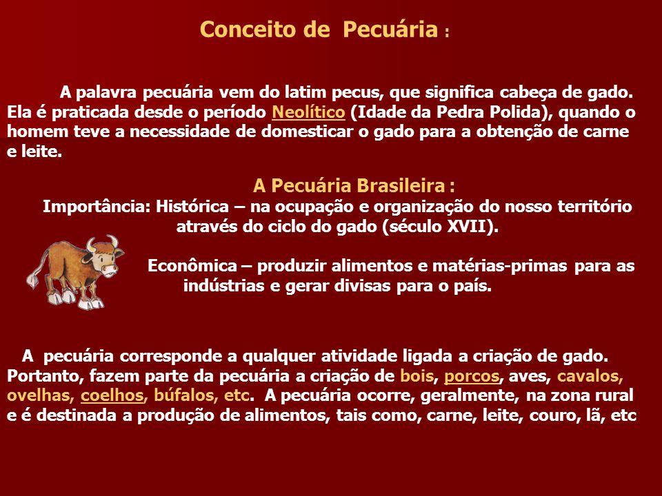 Conceito de Pecuária : A palavra pecuária vem do latim pecus, que significa cabeça de gado.