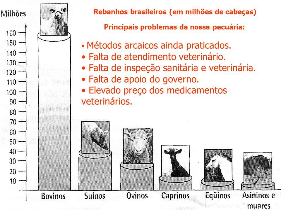 Principais problemas da nossa pecuária: Métodos arcaicos ainda praticados.