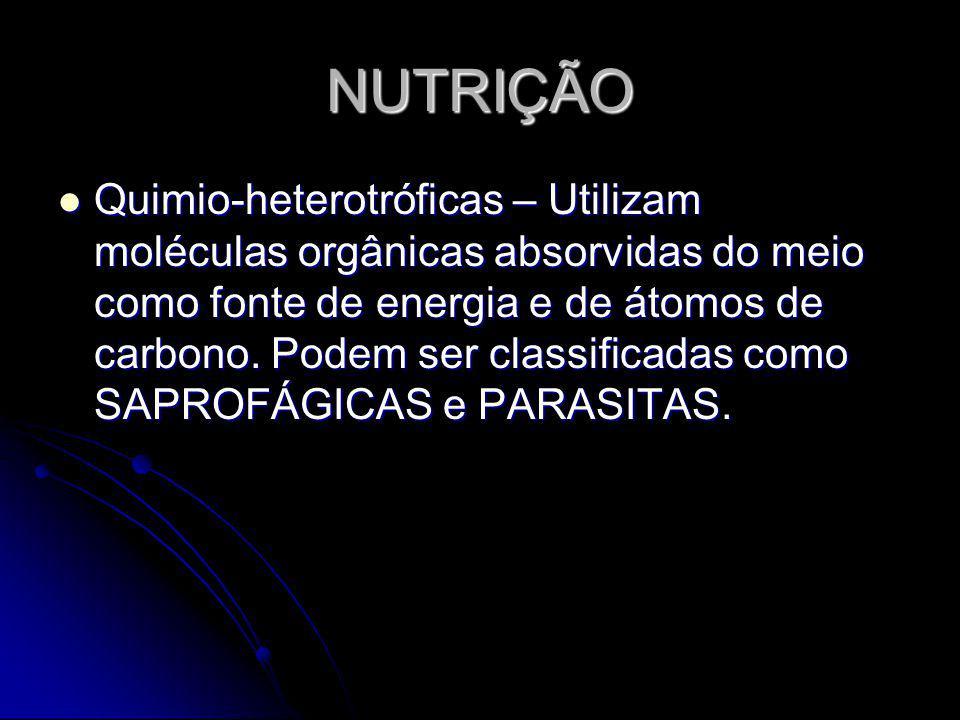 NUTRIÇÃO Quimio-heterotróficas – Utilizam moléculas orgânicas absorvidas do meio como fonte de energia e de átomos de carbono. Podem ser classificadas