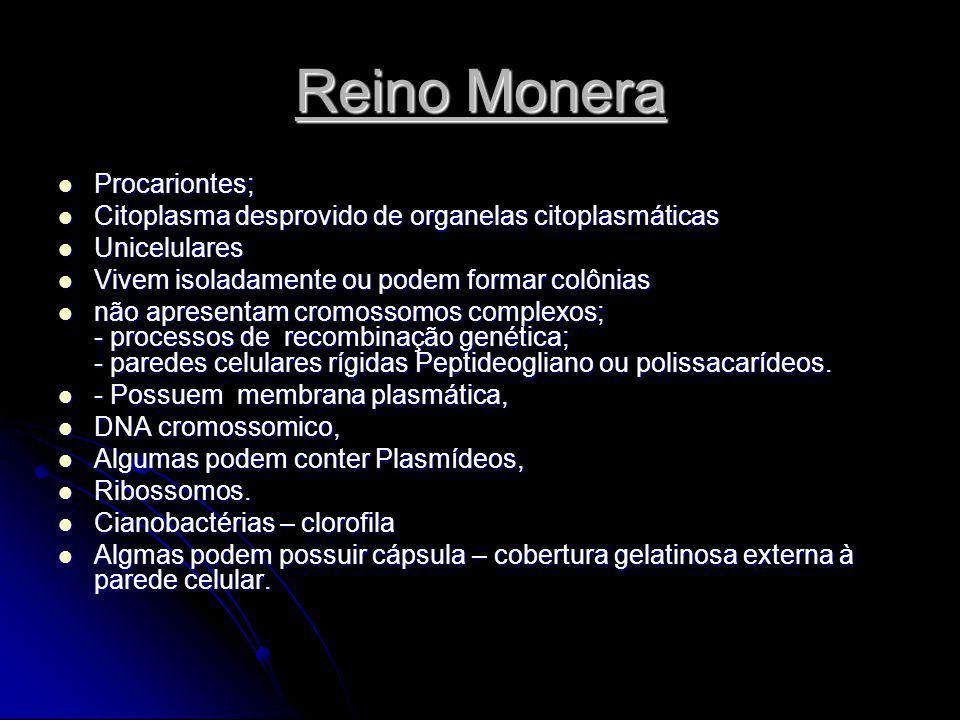 Reino Monera Procariontes; Procariontes; Citoplasma desprovido de organelas citoplasmáticas Citoplasma desprovido de organelas citoplasmáticas Unicelu