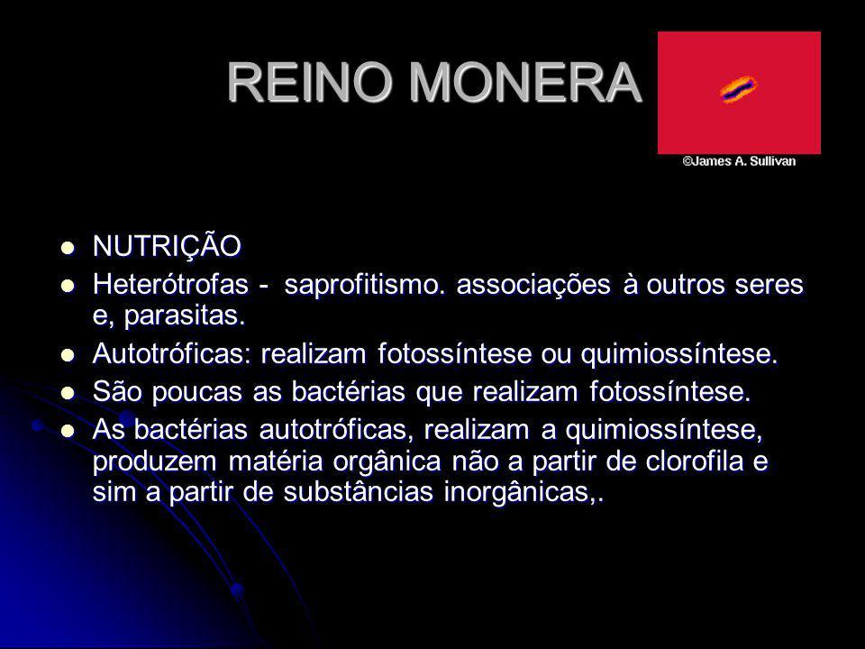 REINO MONERA NUTRIÇÃO Heterótrofas - saprofitismo. associações à outros seres e, parasitas. Autotróficas: realizam fotossíntese ou quimiossíntese. São