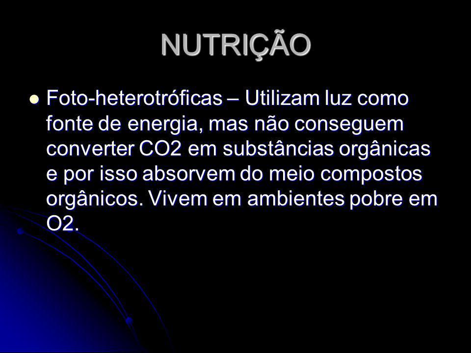NUTRIÇÃO Foto-heterotróficas – Utilizam luz como fonte de energia, mas não conseguem converter CO2 em substâncias orgânicas e por isso absorvem do mei