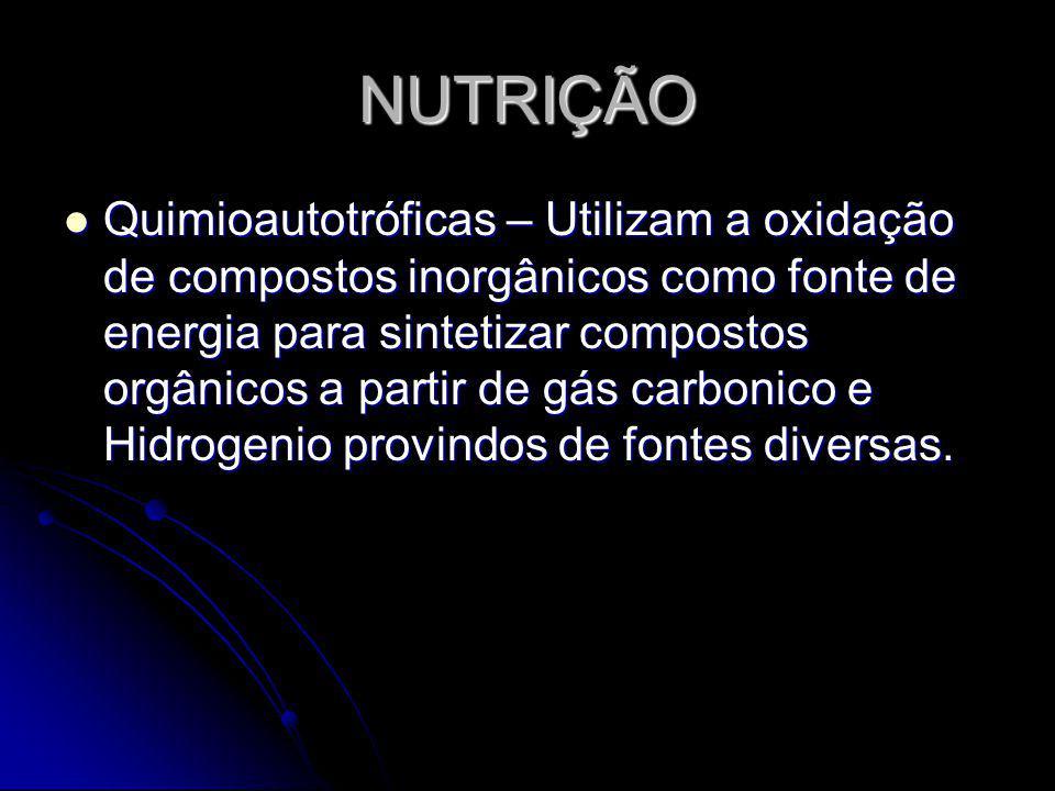 NUTRIÇÃO Quimioautotróficas – Utilizam a oxidação de compostos inorgânicos como fonte de energia para sintetizar compostos orgânicos a partir de gás c