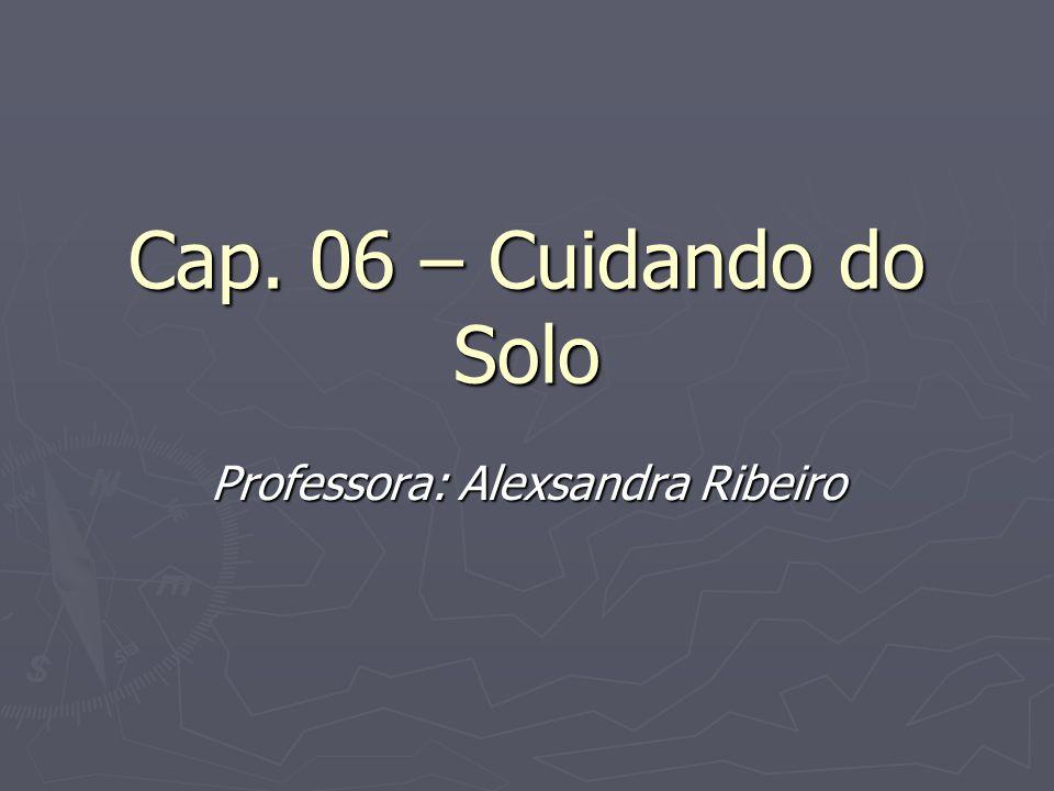 Cap. 06 – Cuidando do Solo Professora: Alexsandra Ribeiro