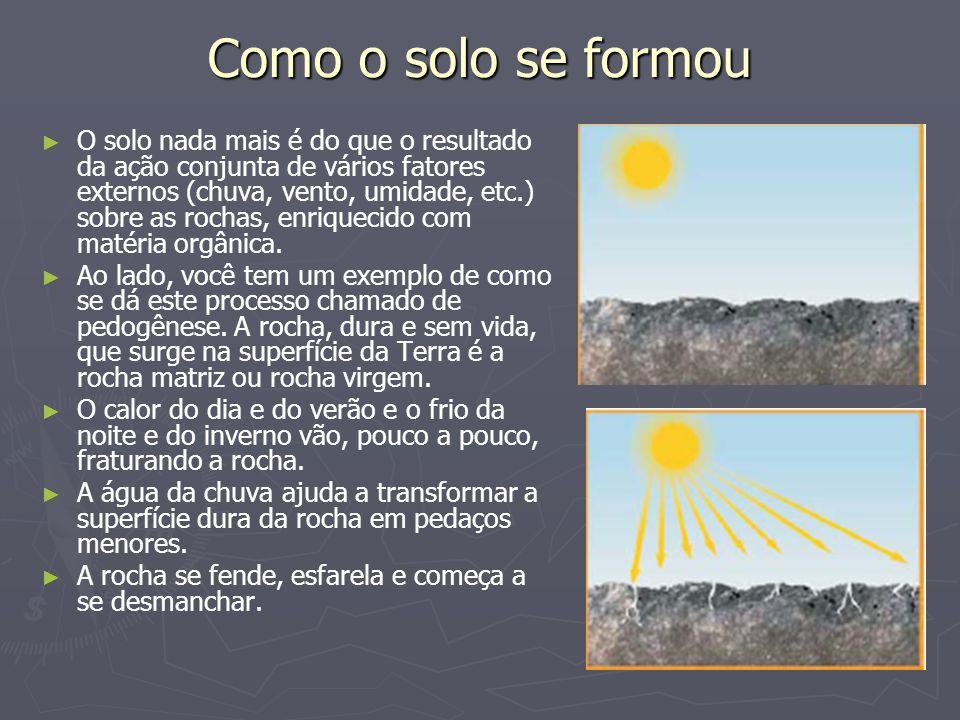 Como o solo se formou O solo nada mais é do que o resultado da ação conjunta de vários fatores externos (chuva, vento, umidade, etc.) sobre as rochas,