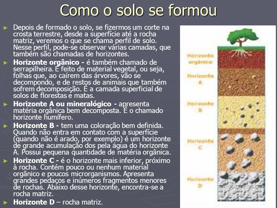 Como o solo se formou Depois de formado o solo, se fizermos um corte na crosta terrestre, desde a superfície até a rocha matriz, veremos o que se cham
