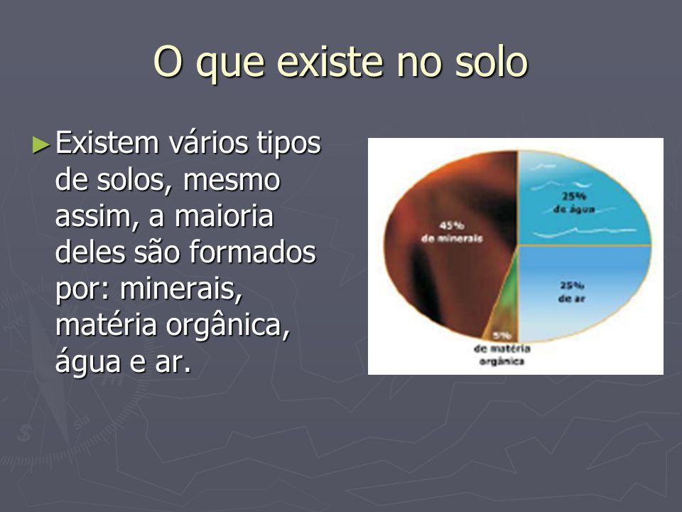 O que existe no solo Existem vários tipos de solos, mesmo assim, a maioria deles são formados por: minerais, matéria orgânica, água e ar. Existem vári