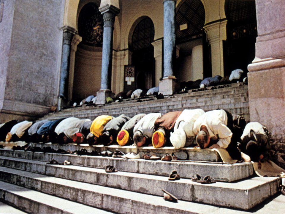 A proteção aos órfãos e às viúvas, assim como o consumo de carne de porco e seus derivados, bebidas alcoólicas, qualquer narcótico, droga ou tóxico são também pregados pelo Islão.