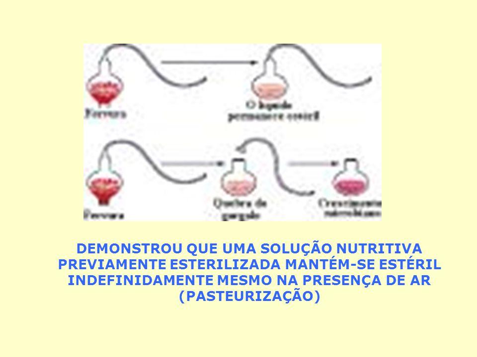 EXPERIÊNCIA AMOLECEU COM FOGO 4 GARGALOS DE VIDROS COM CALDO NUTRITIVO CURVANDO-OS NA FORMA DE PESCOÇO DE CISNE (FIM DA GERAÇÃO ESPONTÂNEA)