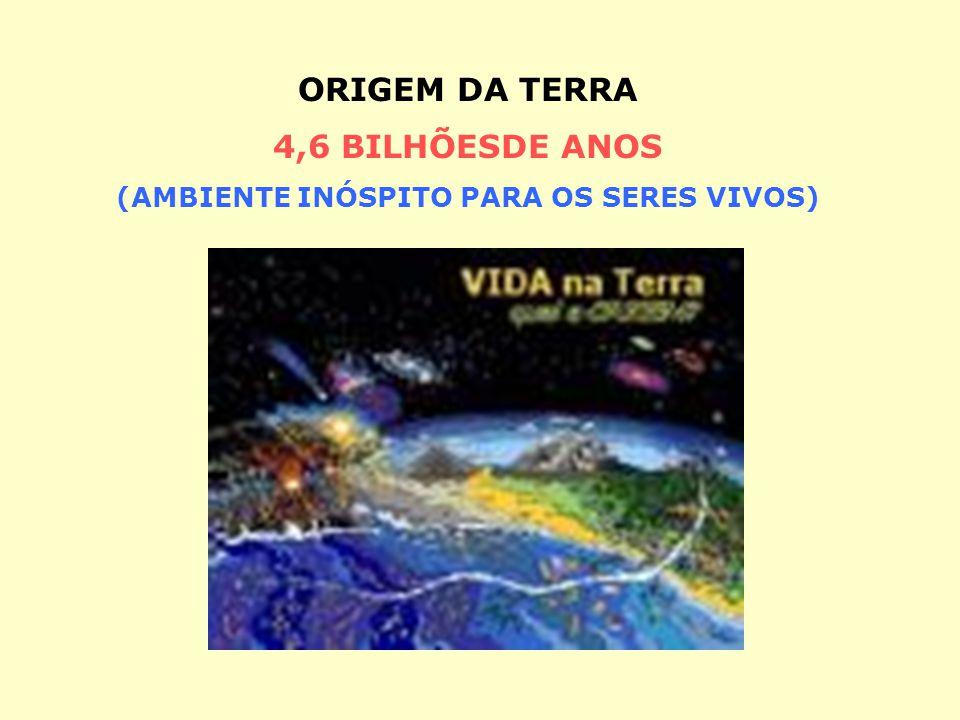 ORIGEM DA TERRA 4,6 BILHÕESDE ANOS (AMBIENTE INÓSPITO PARA OS SERES VIVOS)