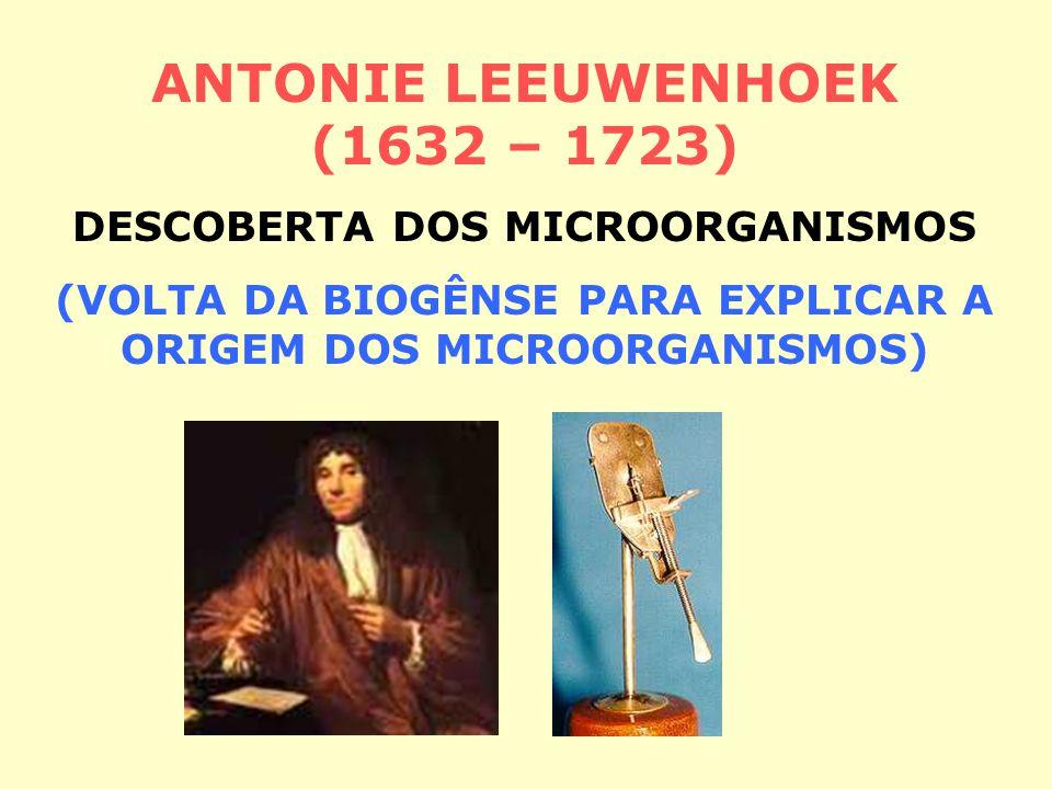 ANTONIE LEEUWENHOEK (1632 – 1723) DESCOBERTA DOS MICROORGANISMOS (VOLTA DA BIOGÊNSE PARA EXPLICAR A ORIGEM DOS MICROORGANISMOS)