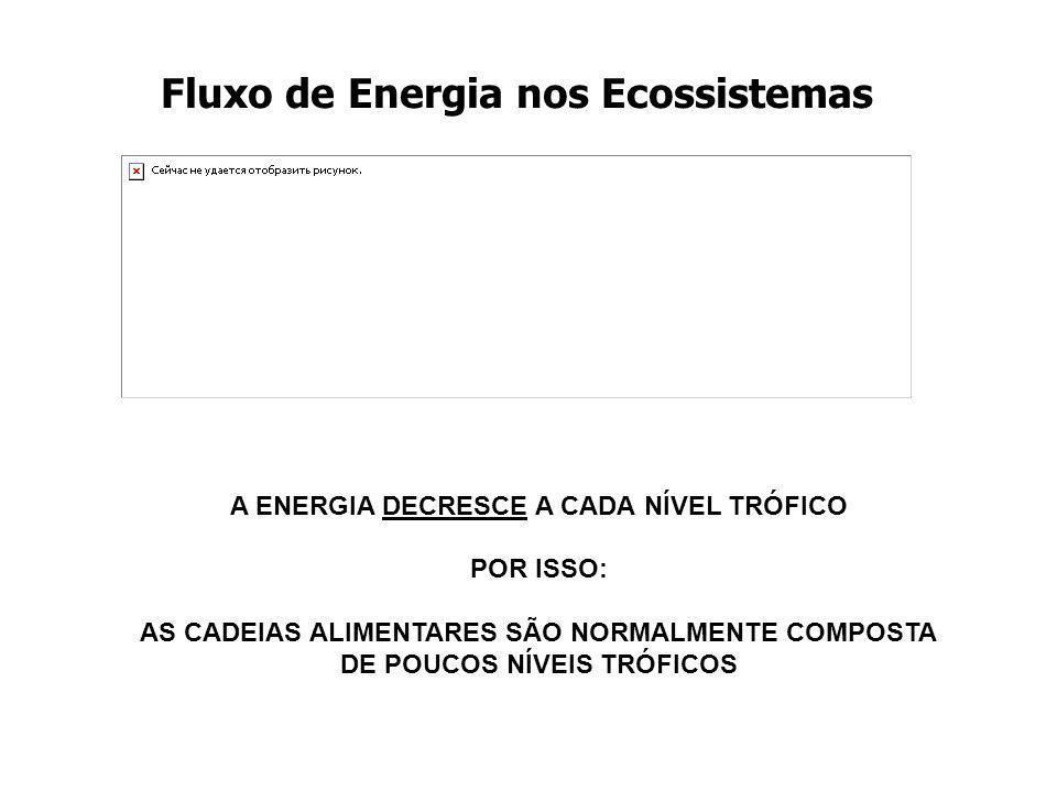 Fluxo de Energia nos Ecossistemas A ENERGIA DECRESCE A CADA NÍVEL TRÓFICO POR ISSO: AS CADEIAS ALIMENTARES SÃO NORMALMENTE COMPOSTA DE POUCOS NÍVEIS T