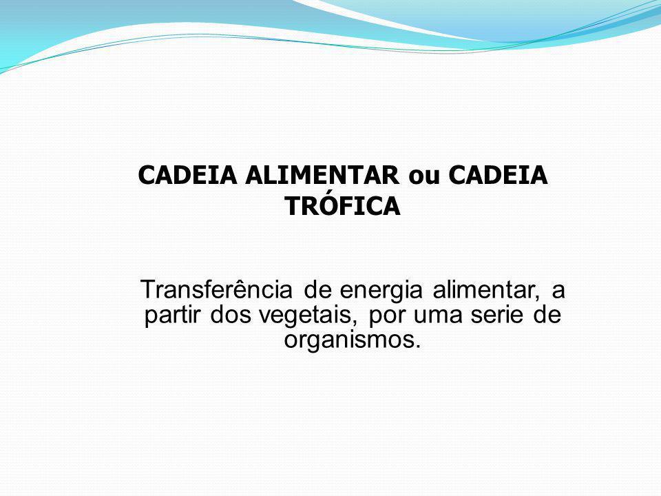 CADEIA ALIMENTAR ou CADEIA TRÓFICA Transferência de energia alimentar, a partir dos vegetais, por uma serie de organismos.
