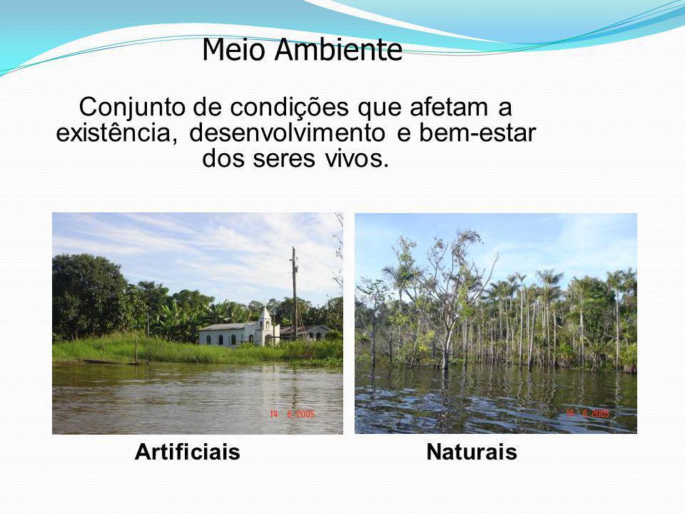 Ciclo do Fósforo Rochas Fosfatadas Erosão Fosfatadas Dissolvidos Solo e Meio Aquático Aves marinhas e peixes Vegetais Consumidores Excreções Sedimentos Marinhos Profundos Excrementos de aves marinhas