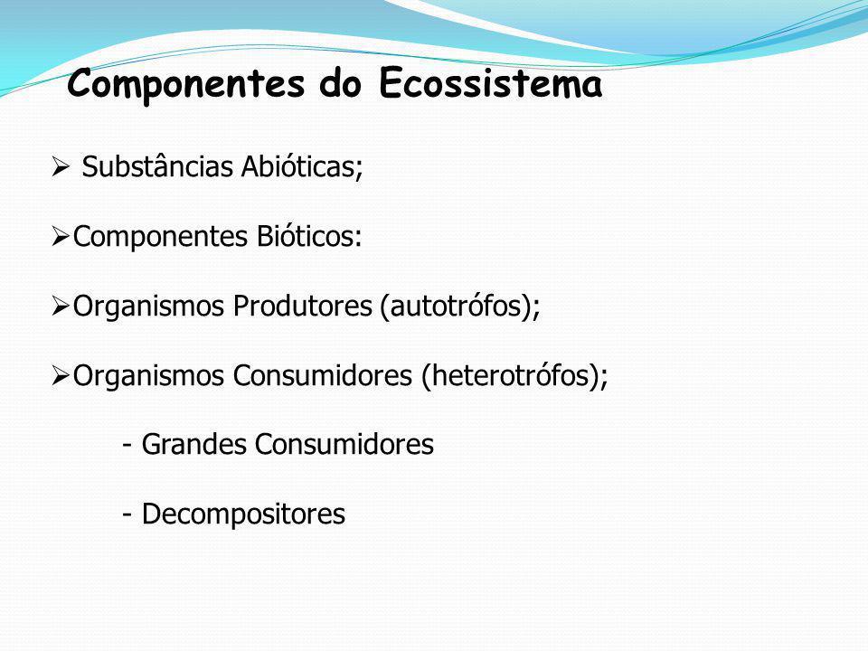 Componentes do Ecossistema Substâncias Abióticas; Componentes Bióticos: Organismos Produtores (autotrófos); Organismos Consumidores (heterotrófos); -