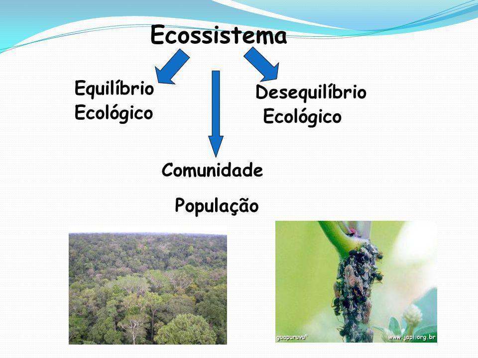 Ecossistema Equilíbrio Ecológico Desequilíbrio Ecológico Comunidade População
