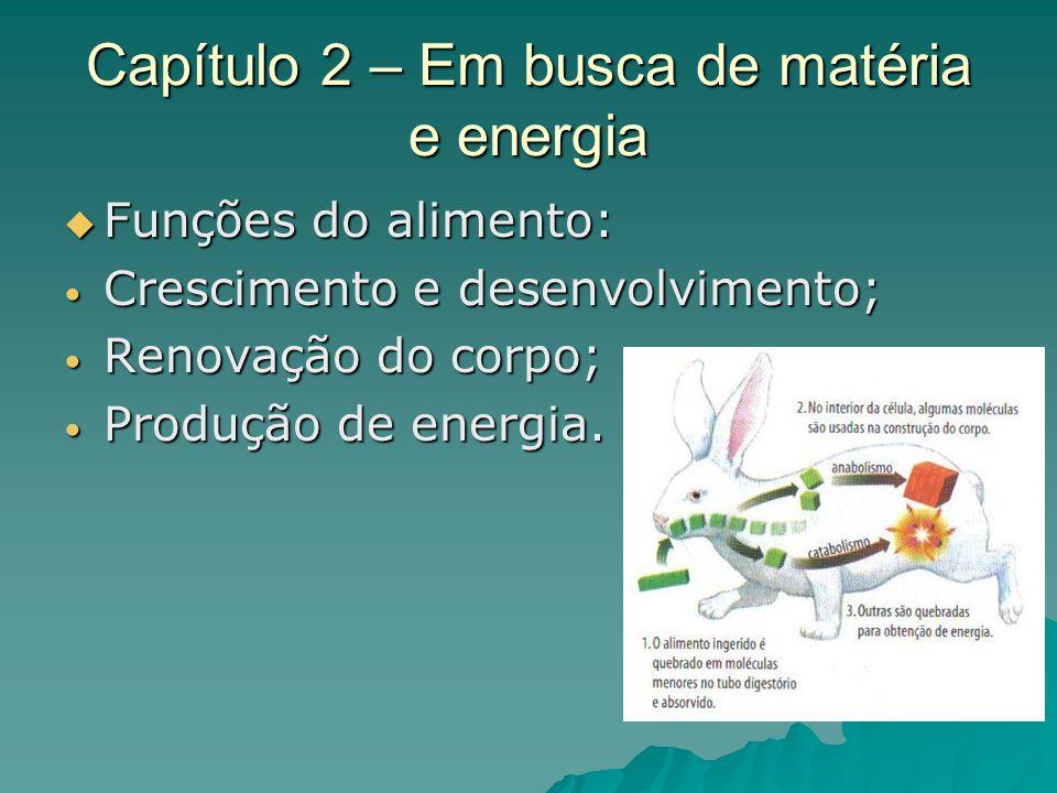 Capítulo 2 – Em busca de matéria e energia Funções do alimento: Funções do alimento: Crescimento e desenvolvimento; Crescimento e desenvolvimento; Ren
