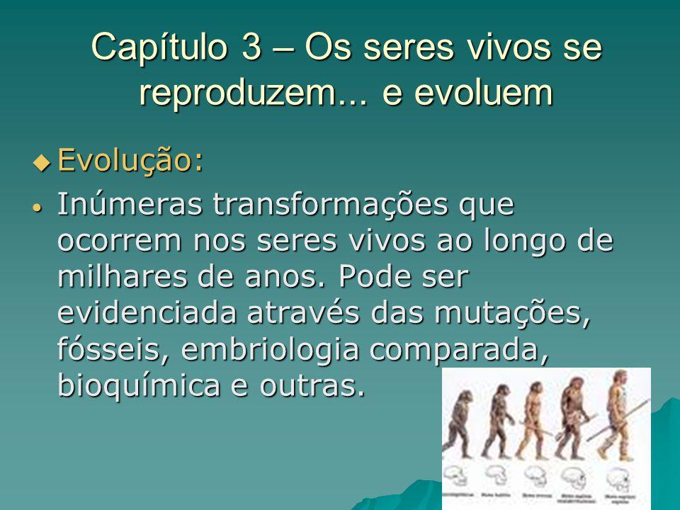 Capítulo 3 – Os seres vivos se reproduzem... e evoluem Evolução: Evolução: Inúmeras transformações que ocorrem nos seres vivos ao longo de milhares de